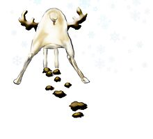 Crap! It's Christmas again  (with snowflakes) by yvonne willemsen