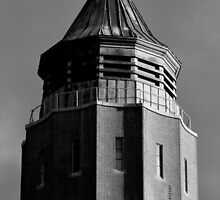 Robert Moses Water Tower   Fire Island, New York  by © Sophie W. Smith