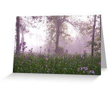 lavender morning Greeting Card