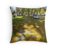 Minnesota Sidewalk Throw Pillow