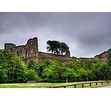 Barnard Castle Photographic Print