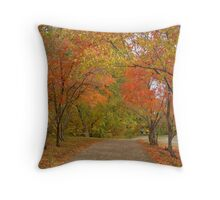 Stroll In The Park Throw Pillow