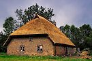 Thatched Roof by Kasia-D