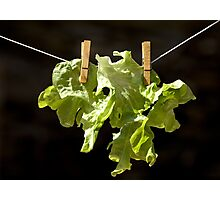 Drying salad Photographic Print