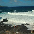 Volcanic Beach, Haleakala National Park, Maui by fauselr