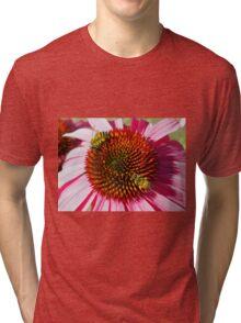 Honey Bees Macro on Echinacea Flower of Summer Tri-blend T-Shirt