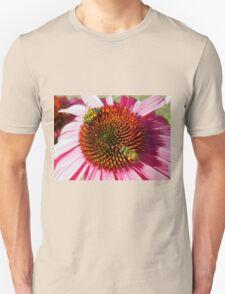 Honey Bees Macro on Echinacea Flower of Summer Unisex T-Shirt