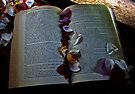 Forgotten Pages by Evita