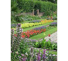 Royal English Garden Photographic Print