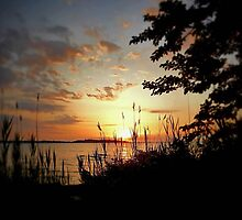 Chesapeake Bay Sunrise by Kenneth Graham