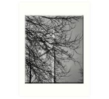 Branching out. Art Print