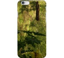 nest - nido iPhone Case/Skin