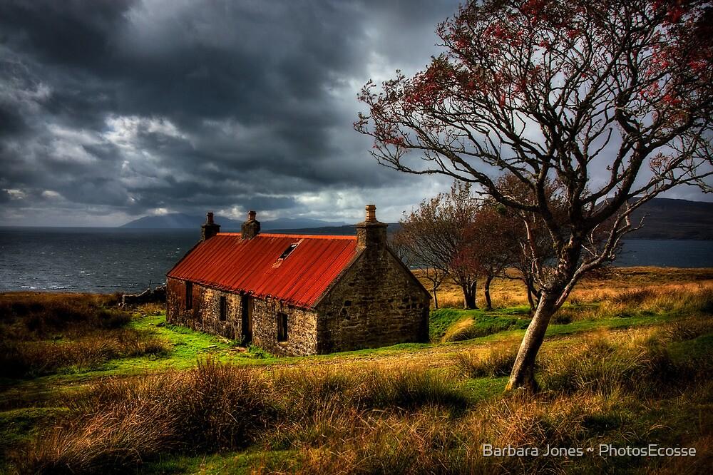 Ruin at Suisinish, Isle of Skye. North West Scotland. by photosecosse /barbara jones