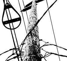 streetpole by Bruce  Dickson