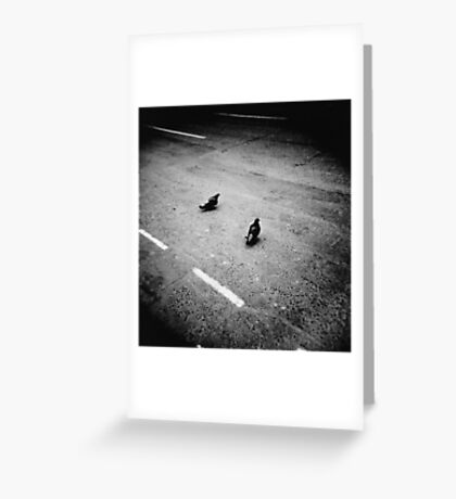 Lonely pigeons in London Greeting Card