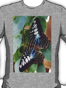 Blue Spotted Butterfly T-Shirt