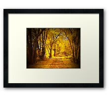 The Golden Pathway Framed Print