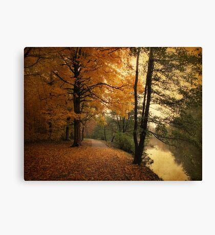 A Leafy Path Canvas Print