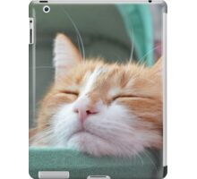 Sugarbunch sleeping in the babybuggy... iPad Case/Skin