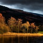Winter Sun Loch Ard by David Mould