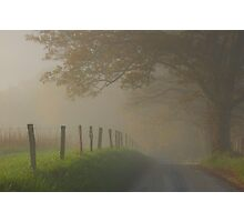 fall in the fog Photographic Print