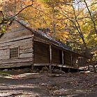 Autumn on the Farm by Anthony Pierce