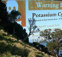 Warning, Poison! by Lynne Haselden
