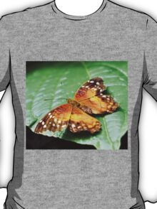Orange Spotted Butterfly T-Shirt