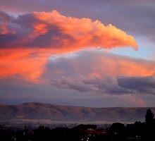 Phenix over Yakima by Hiroshi  Maeshiro
