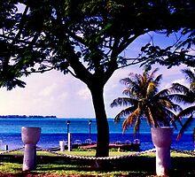 View of Cocos Island from Merizo by Hiroshi  Maeshiro