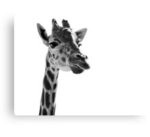 Giraffe Expressionism Metal Print
