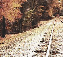 Autumn Tracks 2 by lroof