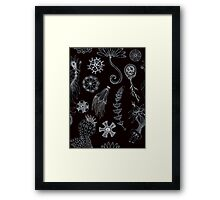 Sea Ballet in Black and White with Apologies to Ernst Haeckel Framed Print