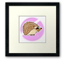 Adorable baby Hedgehog Framed Print