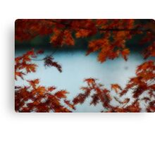 The Leaves of Autumn Canvas Print