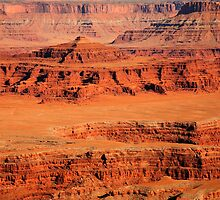 View from Dead Horse Point State Park  by Olga Zvereva