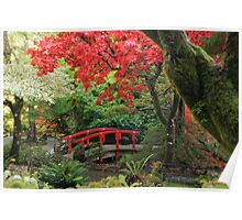 Fall Colours in the Japanese Garden Poster