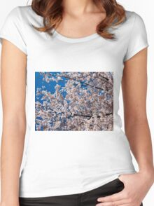 Cherry tree blossoms Women's Fitted Scoop T-Shirt