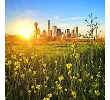 Dallas / Oz Photographic Print