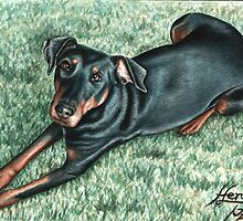 Dobermann Dog Portrait by Nicole Zeug