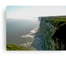 Bempton Cliffs Canvas Print