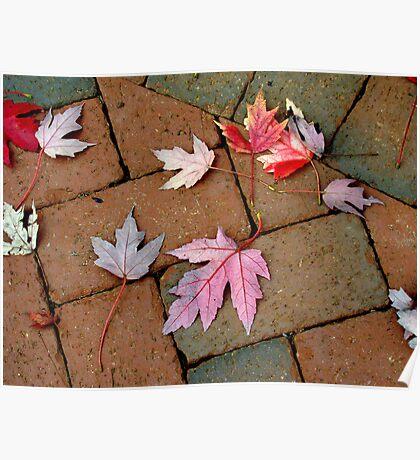 Autumn Moods 5 Poster