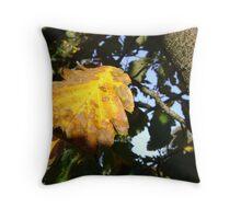 Autumn - yellow leaf close-up, Burntisland Throw Pillow