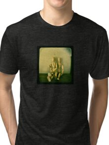 a stilted companionship Tri-blend T-Shirt