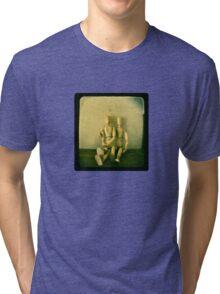 a stilted companionship Tri-blend T-Shirt