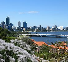 Perth by Mike Paget