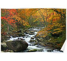 MIDDLE PRONG LITTLE RIVER,AUTUMN* Poster