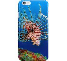 Lionfish at Apo Reef iPhone Case/Skin