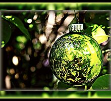 Life Reflections by Christmas Bulb by Sheree Zielke
