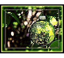 Life Reflections by Christmas Bulb Photographic Print